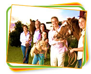 Haarlem Oil for your Family and Horses